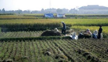 Foto DPRD Penajam Dukung Program Asuransi Tani dan Ternak