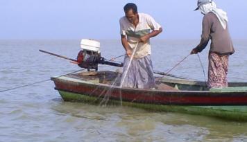 Foto Gelombang Tinggi, Nelayan Di Pekalongan Tetap Melaut