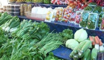 Foto Stok Mencukupi, Harga Sayuran Di Padang Stabil