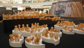 Foto Gawat, Populasi Harimau Sumatera Kritis, WWF Ajak Publik Dukung #DoubleTigers