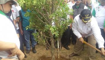 Foto Hutan Adat Makin Dikembangkan di Sumut