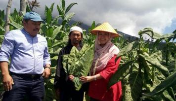 Foto Yenny Wahid: Selamatkan Petani Tembakau Indonesia