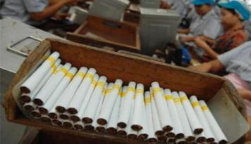 Foto Asosiasi Petani Sesalkan Beredarnya Isu Kenaikan Harga Rokok