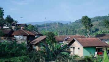 Foto Presiden Jokowi Minta Warga Manfaatkan Kebun Sayur Rumahan